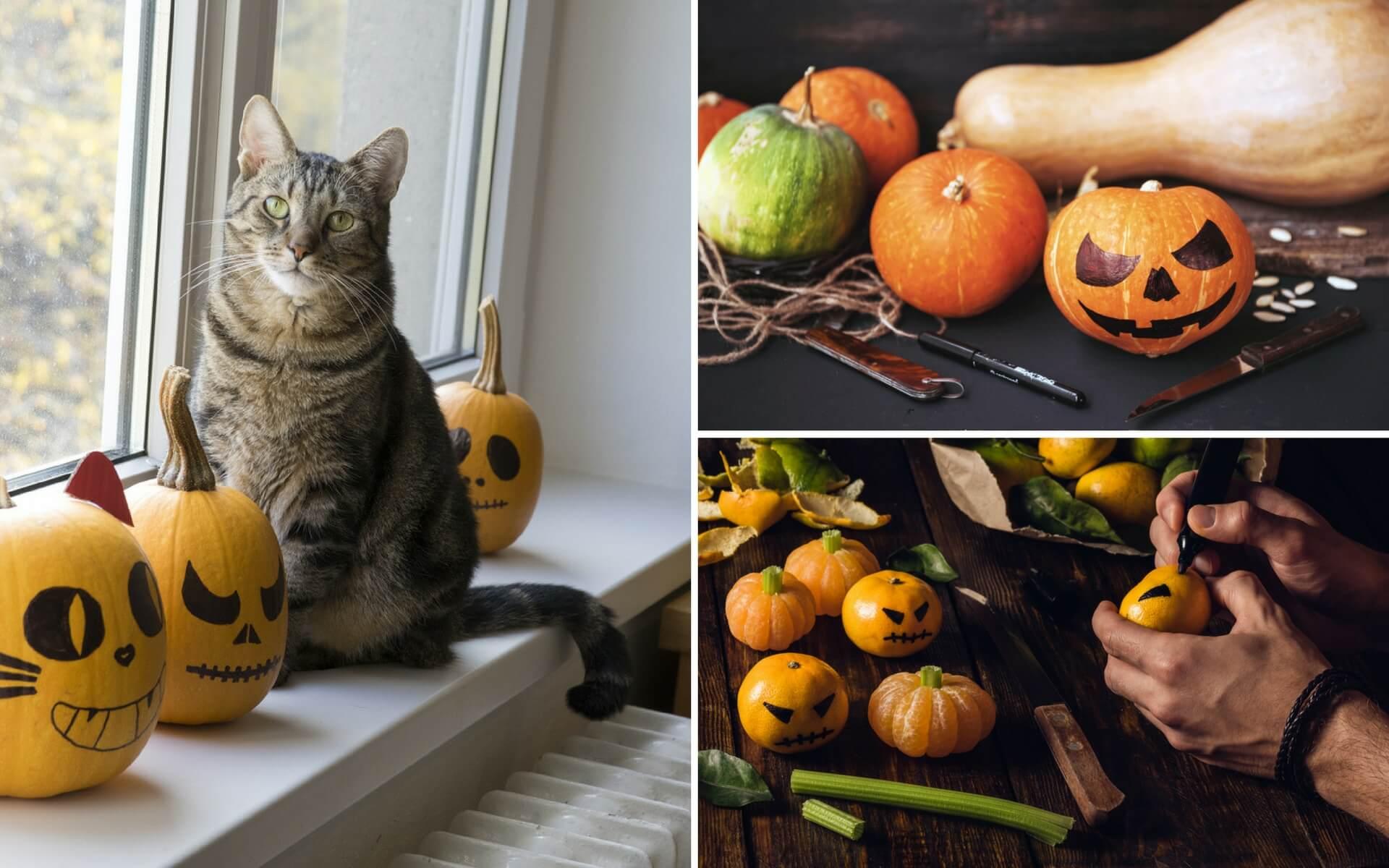 Tante idee originali per realizzare e decorare le zucche di Halloween