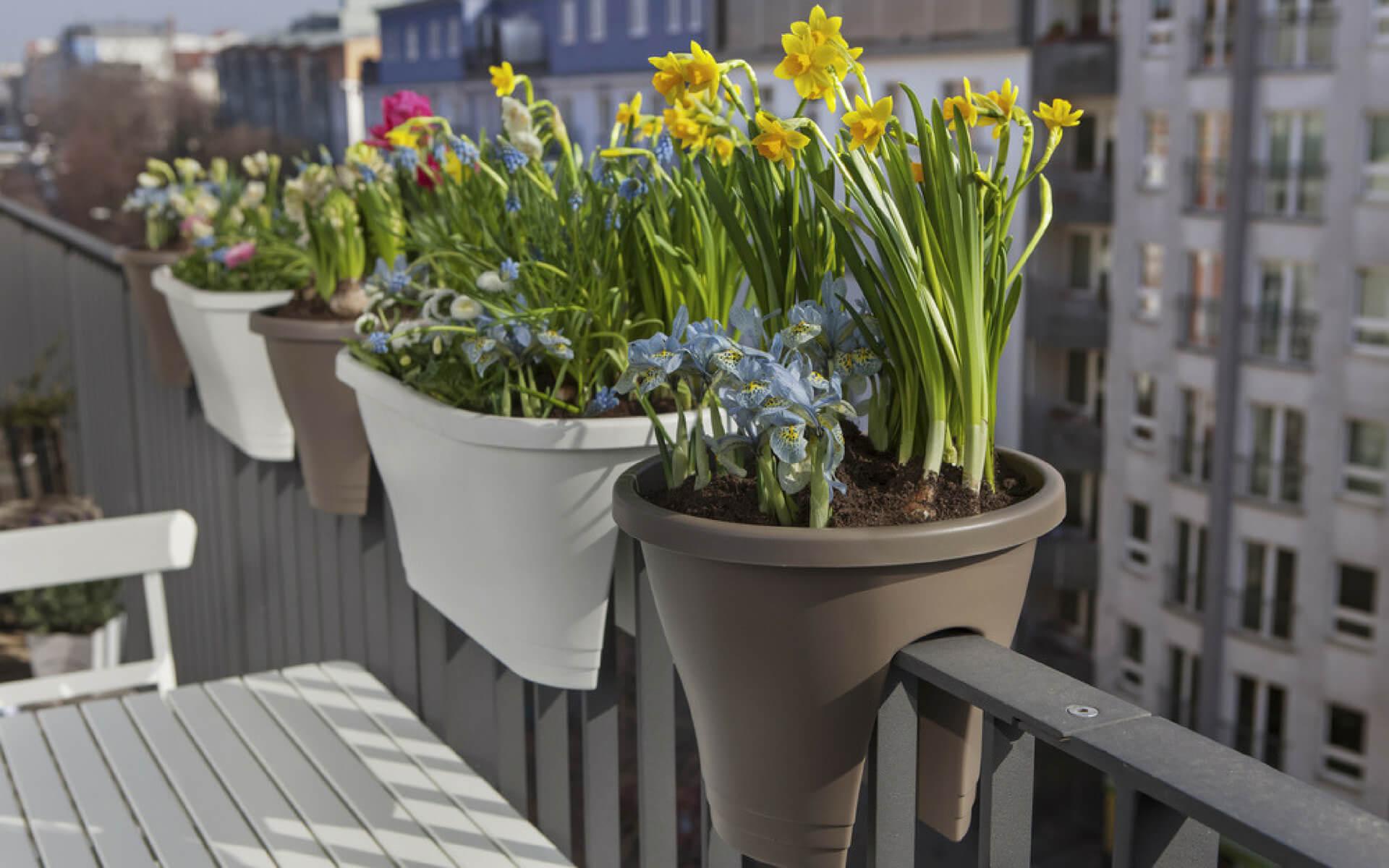 Le fioriere sono una soluzione ideale per arredare un balcone stretto e lungo creando la giusta privacy