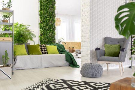 Come allestire e curare un giardino interno